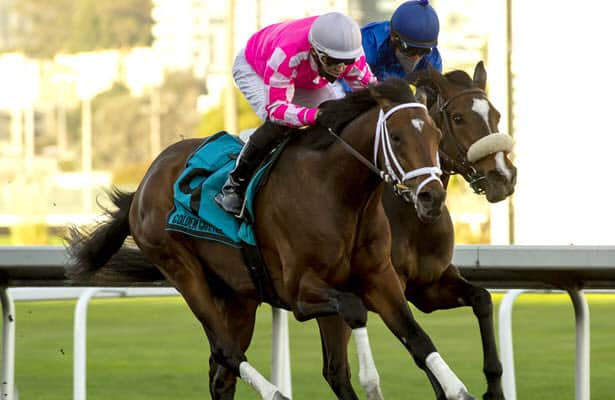 Preakness notes: Rombauer in; Ram new possibility