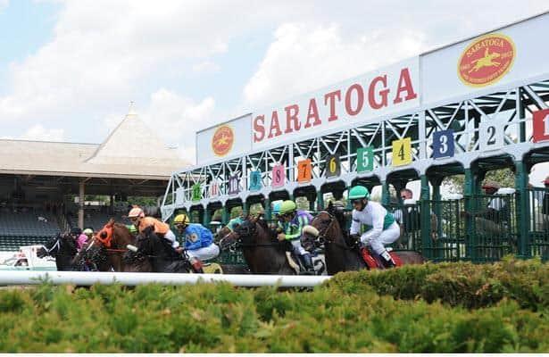 G2 winners Tamahere, Sweet Melania beaten in Saratoga allowance