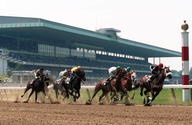 3 longshots you can't ignore in Saturday's stakes races