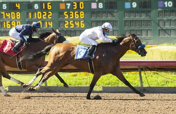 Sneaking Out bests Bellafina to upset Los Al's Great Lady M.