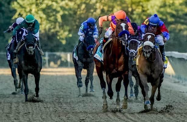 World sport betting results for preakness joe bettinger