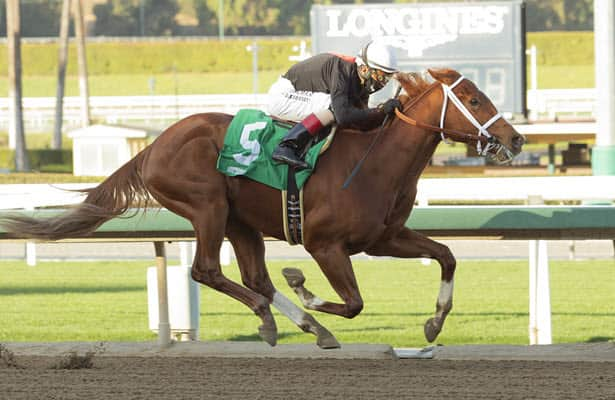 The Chosen Vron aims to stay unbeaten in California Cup Derby