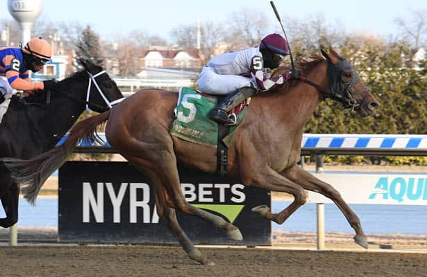 Pedigrees: Here are 4 fillies that could be in the Kentucky Oaks