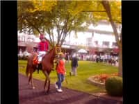 Chica Bonita at Arlington Race Track