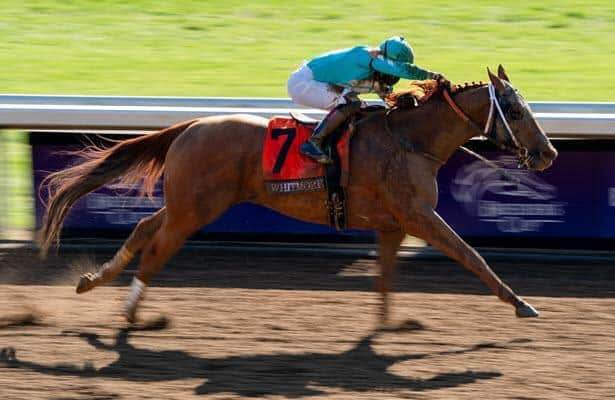 Oaklawn renames stakes race in honor of Whitmore